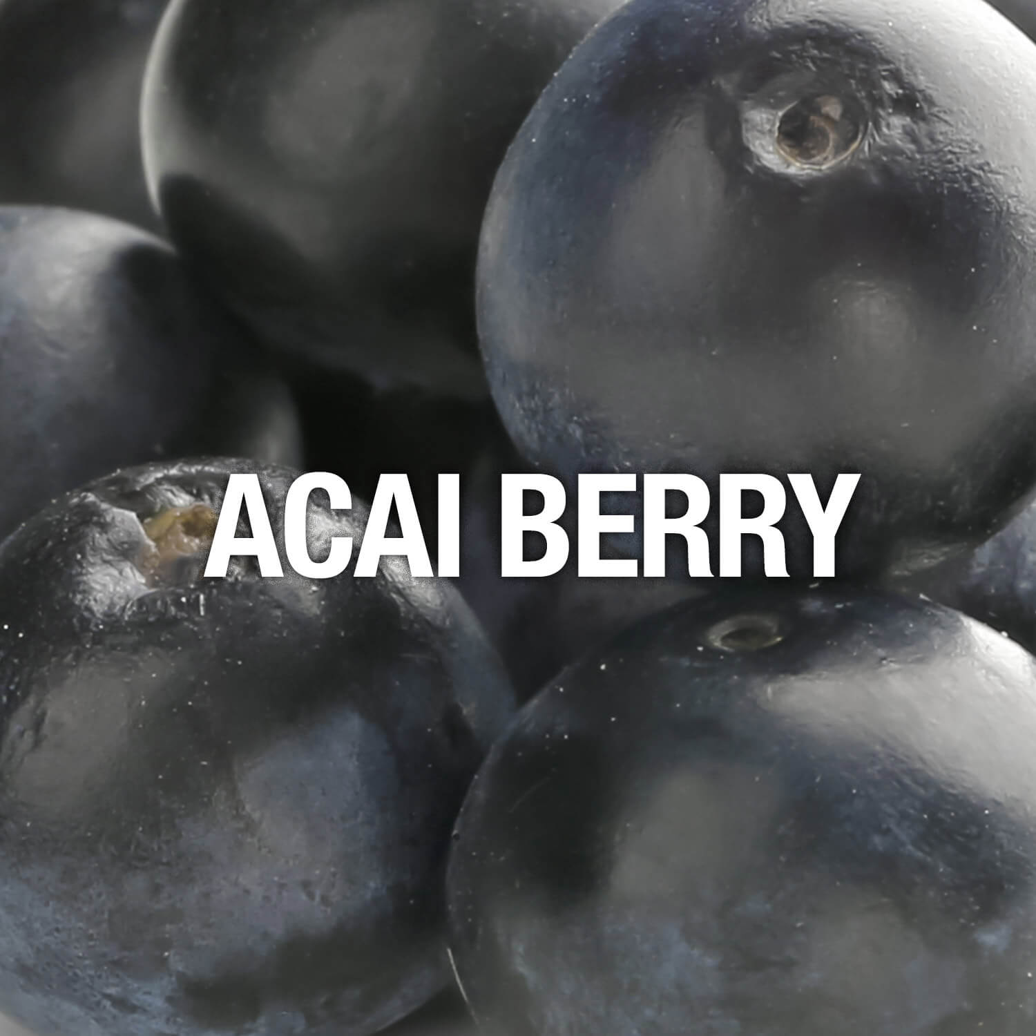 Curve Fragrance Notes Acai Berry