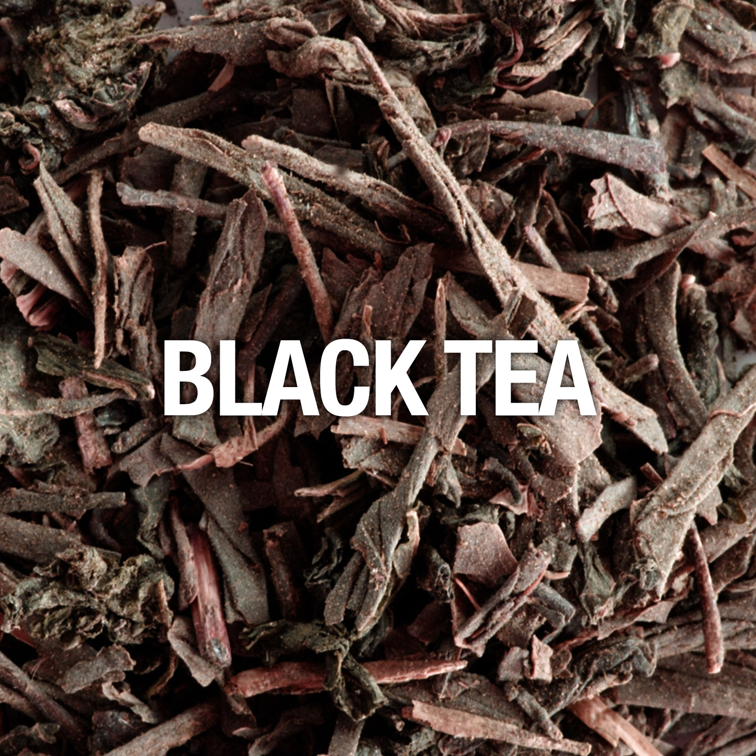 Curve Fragrance Notes Black Tea